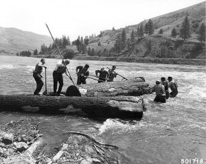 Log Drives by The Forrest History Society on Flickr