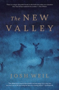 the-new-valley