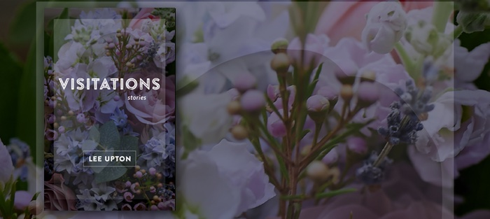 Visitations, by Lee Upton