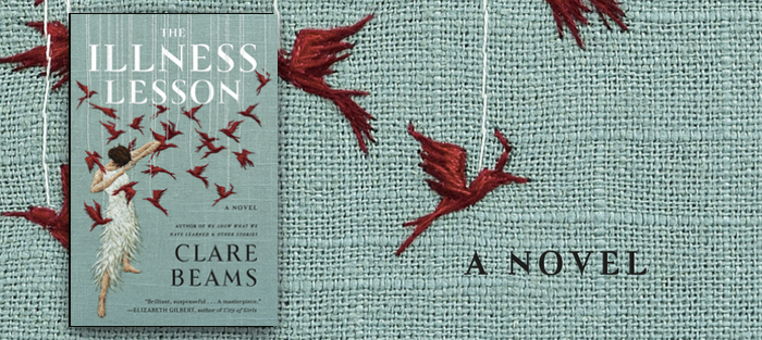 The Illness Lesson, by Clare Beams