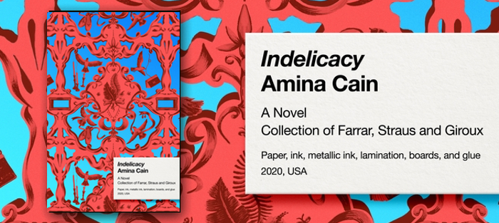 Indelicacy, by Amina Cain