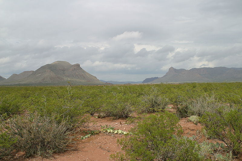 Threemile and Fivemile Mountains near Van Horn, Texas / photo credit: Leaflet