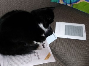 Initial research suggests that cats prefer print text as bedding. However, for reading...