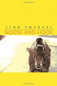 noose-and-hook